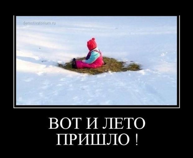 лето приколы картинки: